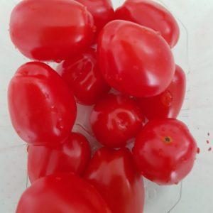 BIO-Cherrytomaatjes  250 (iets langwerpig)