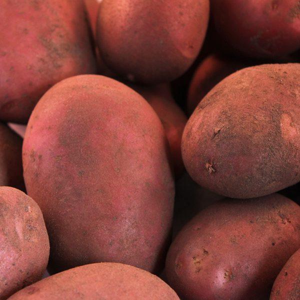 Aardappelen, Raja