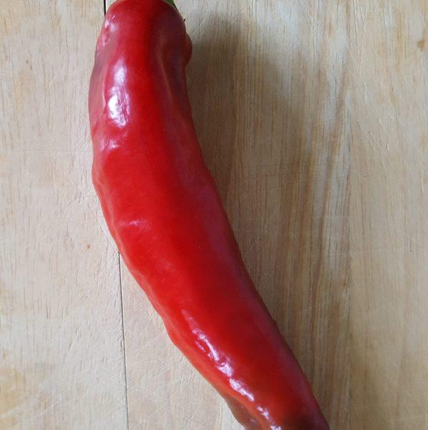 BIO-Puntpaprika (rood)