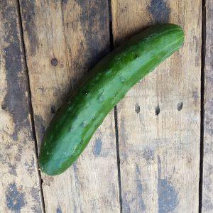 BIO-Wilde komkommer