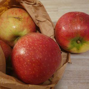 Appels, Ecolette