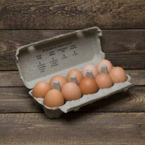 Eieren (10 stuks)