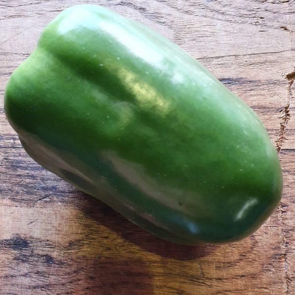 BIO-Paprika, groen